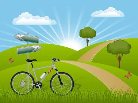 8345057-paisaje-de-verano-con-una-bicicleta